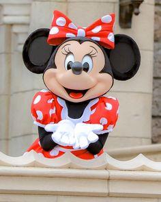 Disney Mouse, Disney Mickey, Disney Parks, Walt Disney World, Minnie Mouse Costume, Disney Wallpaper, Love Is Sweet, Disneyland, Daisy