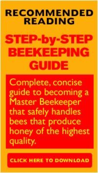 What To Consider Before You Buy Bees!