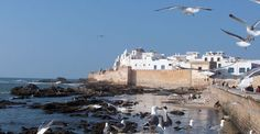 Essaouira ( Maroc)