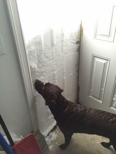 Snow storm in Buffalo NY