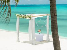 Image result for excellence playa mujeres bamboo gazebo
