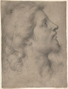 """Bronzino, """"Head of a Bearded Young Man in Profile Facing Right,"""" circa 1550-53. Find the best #Art installations in New York with www.artexperience..."""