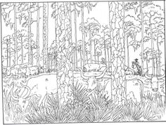 Forest Woods Coloring Page | For printer friendly versions of images and text, click below: