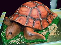 turtle cake by The House of Cakes Dubai, via Flickr