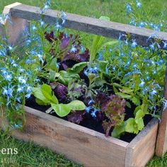 How to build an Easy Wooden Compost Bin using pallets. A pallet compost bin takes ten minutes to build & creates space for converting waste to compost. Diy Herb Garden, Garden Table, Garden Boxes, Veg Trug, Wooden Compost Bin, Vintage Sink, Cucumber Trellis, Wooden Planters, Diy Pallet Projects