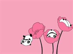 Panda Flowers