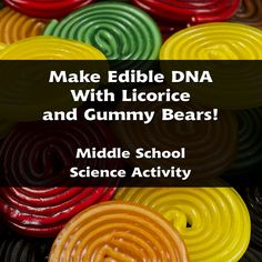 This science lesson is appropriate for Middle School students. Teach your class about the structure of DNA by having them create their own models out of candy! This fun, edible project is a great hands-on activity for real learning. Biology Lessons, Teaching Biology, Science Lessons, Science For Kids, Science Activities, Life Science, Science Ideas, Science Experiments, Science Labs