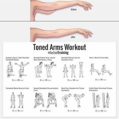 Toned Arms Workout - Healthy Fitness Training Plan Arm Triceps - Yeah We Workout ! Fitness Workouts, Exercise Fitness, Fitness Herausforderungen, Fitness Workout For Women, Fitness Motivation, Health Fitness, Arm Workout Women No Equipment, Arm Workout Women With Weights, Arm Exercises With Weights