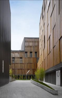 Zigzag architecure, Wooden shutters