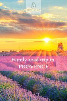 Discover the best advice for a succesful family road trip in Provence! The south of France is full of historical and natural jewels, and today, we offer you a more original and unknown itinerary, at the gates of Languedoc, Camargue and Occitanie. During this holiday itinerary, we will be offering you a playful aspect, but also relaxation and luxury, and finally a cultural and historical side. This itinerary will mainly focus on the Occitanie region. #Provence #SouthofFrance #roadtrip…