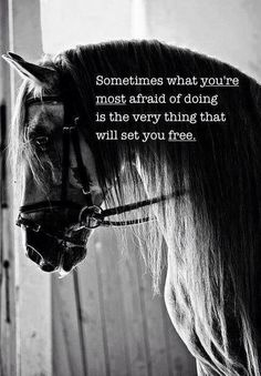 Just do it....I think this every time I go over a jump after not doing it for a while. #crazyhorseperson #ilovehorses #cowgirlup: