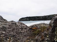 Sumner Beach, Christchurch, New Zealand New Zealand, Princess, Beach, Water, Pictures, Photography, Outdoor, Instagram, Gripe Water