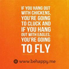 Chicken are fine.   Eagles push the limits!