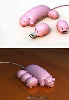 USB de Cerditos