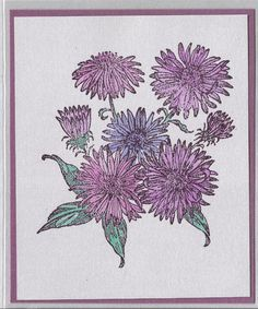 Flower of the Month-September's Asters by inkieannie on Etsy