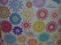 Colorindo Flores - Jardim Secreto - johanna Basford