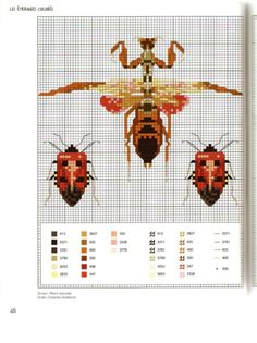 Gallery.ru / Photo # 52 - MARABOUT Insects - tatasha Cross stitch scientific diagrams insects labelled victorian insect collection