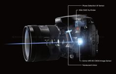 An Introduction to the Alpha Mount by Kelly Davis. | sonyalpharumors