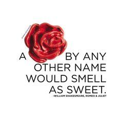 Romantic Valentines Day Ideas, Valentines Jewelry, Personalized Charms, Origami Owl, Jewelry Companies, Custom Jewelry, Personalized Jewelry