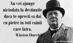 Tot am folosit-o ieri in seminar. Timeline Photos, Aesthetic Wallpapers, Leadership, Humor, Words, Venice Beach, Life, Motivational, Happiness