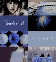 Ilvermorny aesthetics: Thunderbird