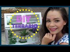 DIY/TERRÁRIO/RECICLADO/LETICIA ARTES