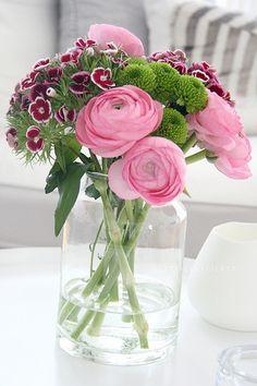 ranunculus and sweet william Green Flowers, My Flower, Flower Vases, Beautiful Flowers, Simply Beautiful, Deco Floral, Flower Quotes, Ranunculus, Ikebana