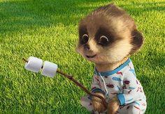 Baby Oleg.