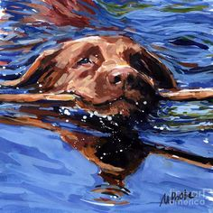 Strong Swimmer Painting  - Molly Poole Watercolor...granddog, Jack.
