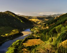 Whanganui River New Zealand wallpapers, Whanganui River New Zealand stock photos, Visit New Zealand, British Isles, Lonely Planet, West Coast, River, Stock Photos, History, Places, Wallpapers