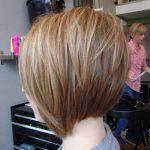 9.-Pixie-Bob-Hair