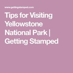 Tips for Visiting Yellowstone National Park   Getting Stamped