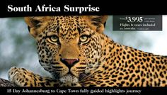 South Africa Surprise: 16 Days from $3,995 ex Australia
