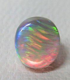 Opal  Pearl-Nautilus