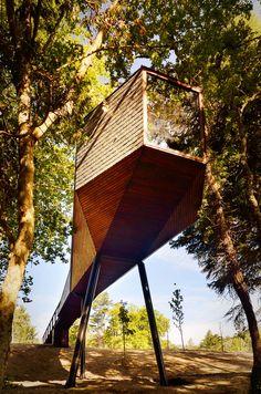 Tree Snake House: una casa cannocchiale nel bosco | Design Fanpage