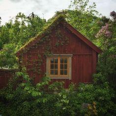 Hus kan vara verkligen magiskt fina. Jag hittade detta lilla väldigt enkla lilla huset idag  och man kan nästan tro att det skulle ligga i nån tropisk regnskog men det är Sverige och i slutet av maj. Ett tak, fyra väggar, två fönster på varje gavel och en pardörr på mitten. Måla allt i Falu ljus slamfärg förutom foder som går i grått och dörr/fönsterbågar som du målar i gulockra linoljefärg och du har förmodligen världens finaste lilla stuga och lätt att underhålla som det här. Det är det…