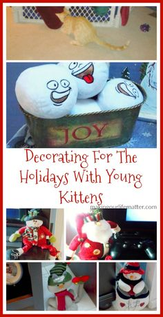 Decorating For The Holidays With Young Kittens #sponsored