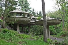 Some of the oddest homes you can buy right now   Spaces -- I call this Egg Carton Mushrooms