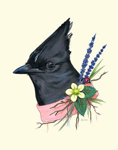Keep an eye out when youre in the forest for this Jays handiwork. She is renowned for designing outrageously beautiful yet eclectic nests Animal Art Prints, 1 Tattoo, Bird Illustration, Animal Illustrations, You Draw, Arte Pop, Art Plastique, Bird Art, Beautiful Birds