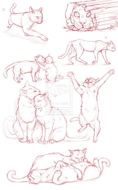 Draw Cats Cat Dump by QuietLittleLeaf - Drawing Poses, Drawing Sketches, Painting & Drawing, Sketch Poses, Drawing Of A Cat, Drawing Tips, Sketching, Drawing Couple Poses, Matte Painting