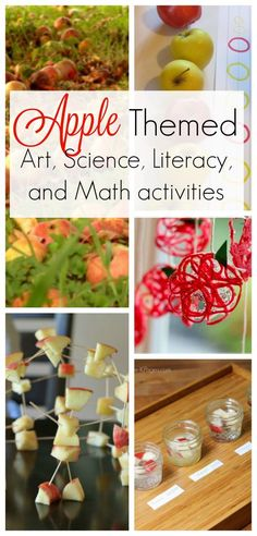 Everything you need for an Apple Theme! Perfect for in the classroom, preschool, or homeschool. Art, science, and math activities using APPLES! Preschool Apple Activities, Autumn Activities For Kids, Fall Preschool, Preschool Apple Theme, Kids Learning Activities, Preschool Classroom, Apple Activities Kindergarten, September Preschool Themes, Preschool Activities