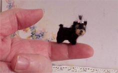 OOAK miniature tiny  Yorkie Pup Dog   Sculpted and furred   IGMA dollhouse 1:12