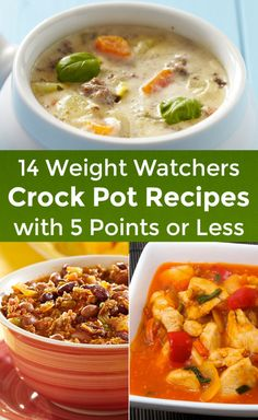 Skinny Points – Recipes » 14 Weight Watchers CrockPot Recipes with 5 Points or Less
