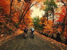 Fabbrica della Bici: Photo #lifestyle #cycling