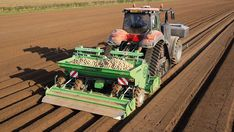 How breeding can help farmers manage PCN in potatoes - Farmers Weekly Potato Varieties, Crop Protection, Heavy Machinery, Types Of Soil, Farmers, Potatoes, Canning, Home Canning