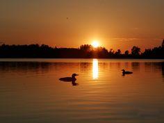 dawn on Loon Lake, MN