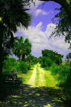 Tybee Island Trail, Tybee Island, Georgia