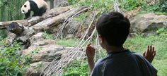 Things to do with Kids in DC
