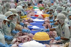 #Vietnam announced a list of 310 Vietnamese Prestigious #Exporters for 2015 #seafood #rice #rubber #coffee #garment #textile