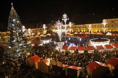Full-Day Brasov Christmas Market Tour from Bucharest One day private tour to Brasov, on the Christmas Market, a beautiful place full of history, traditions and traditional food. In this tour is included a visit to Peles Castle (Sinaia), and to Dracula`s Castle.The tour starts at 8am from your hotel. We drive for approximately 2.5 hours to Sinaia, the place where we will visit the Peles Castle. After that we will pass the mountains to Bran Village, where we will eat a tradition...